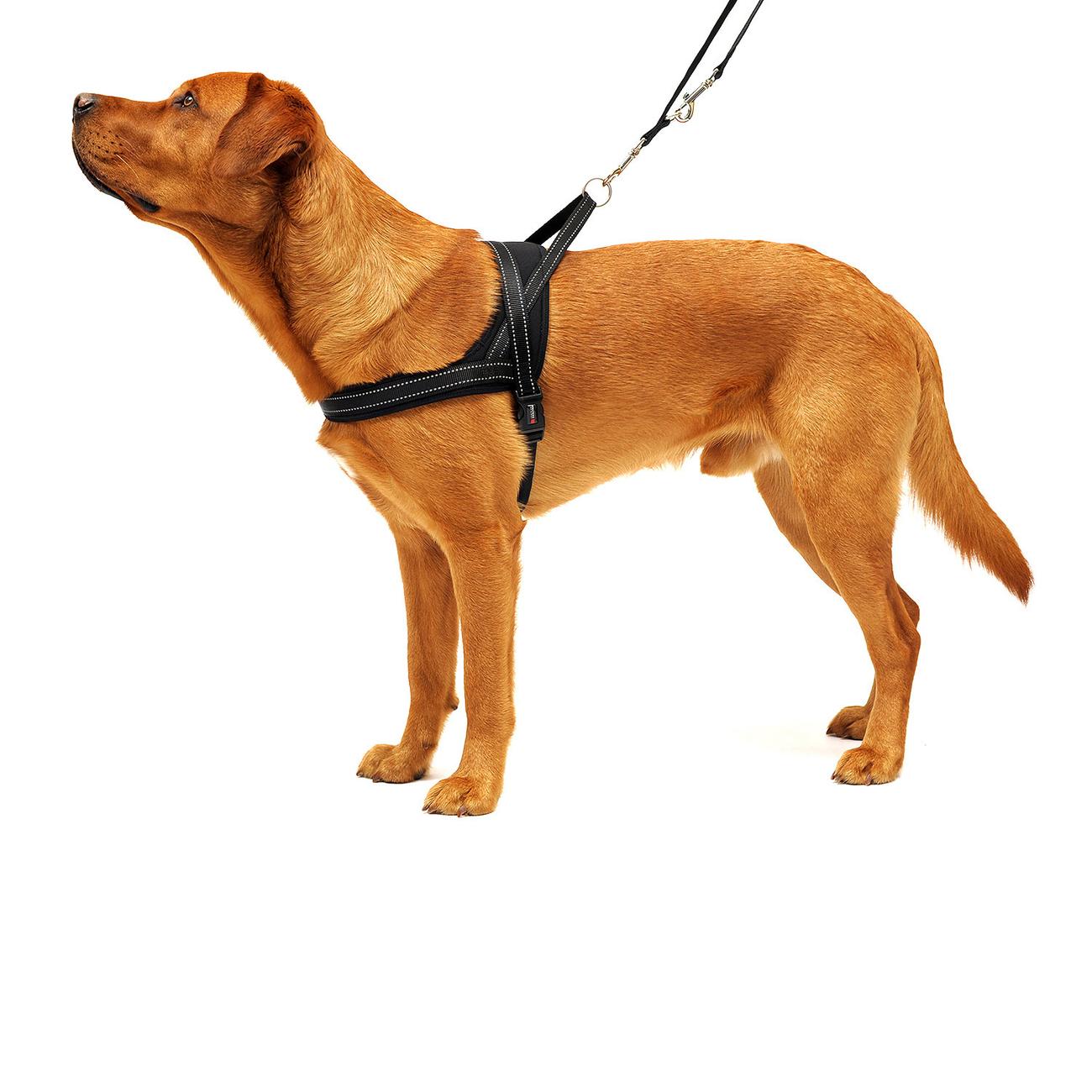 Wolters Hundegeschirr Soft & Safe reflektierend, Bild 7