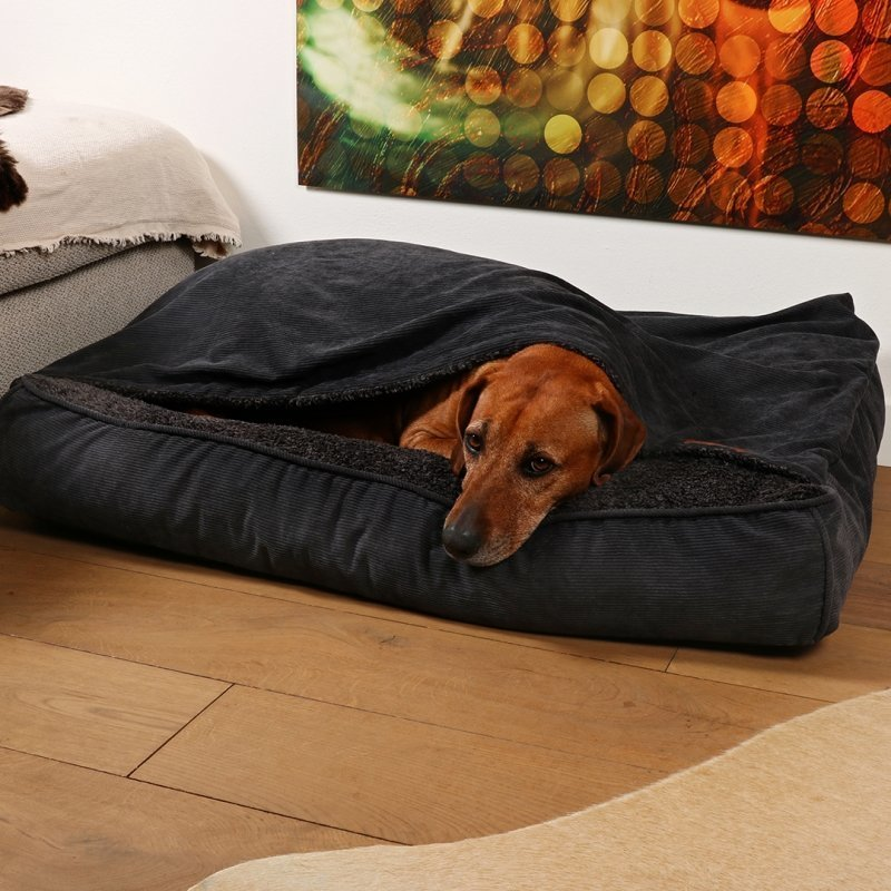 DREAM and DARE Hundekissen Toby mit Decke, Bild 2