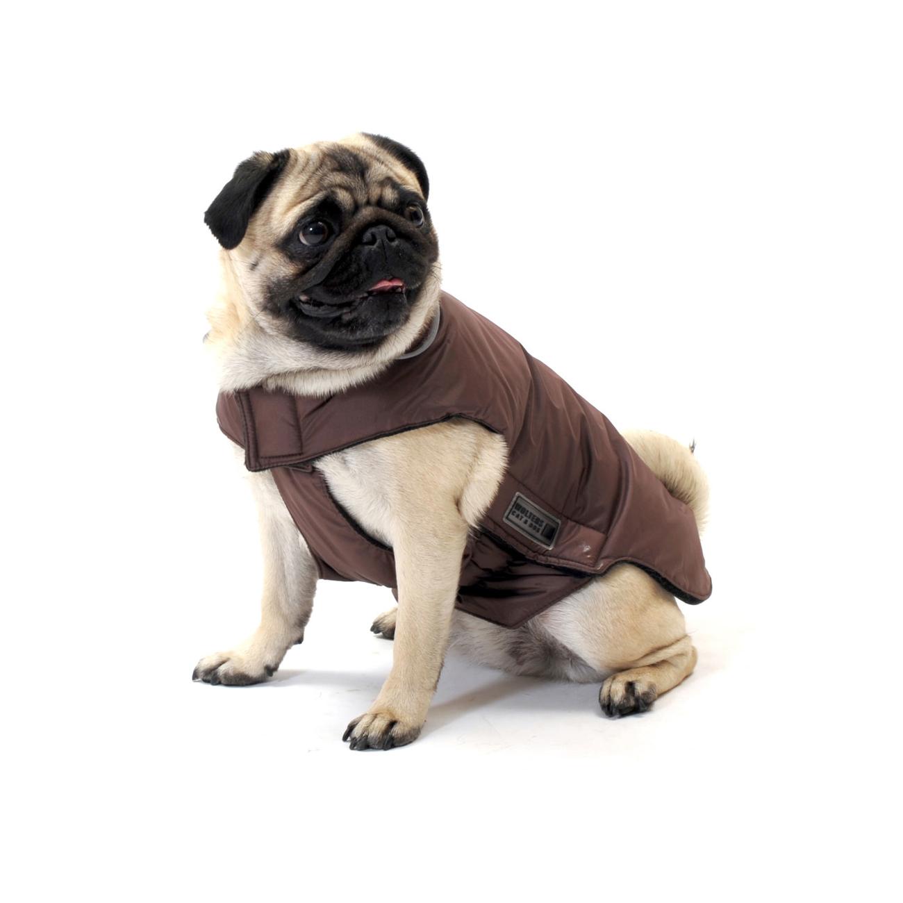 Wolters Hundemantel Outdoorjacke Jack für Mops & Co, Bild 3