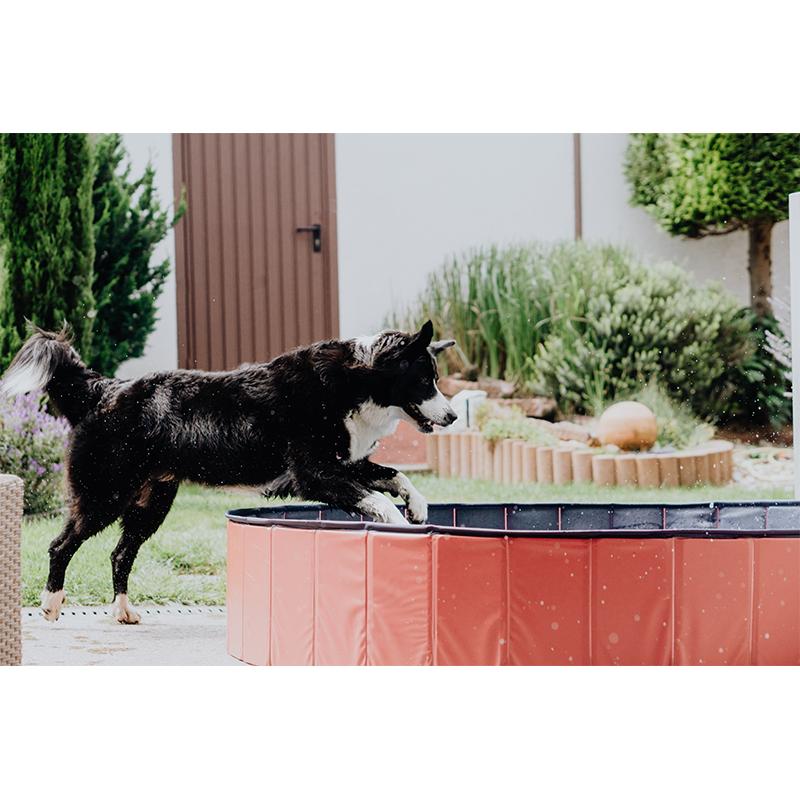 Karlie Hundepool Doggypool, Bild 3