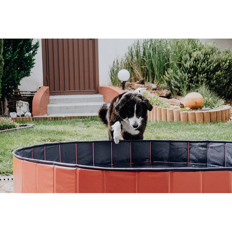 Karlie Hundepool Doggypool, Bild 2