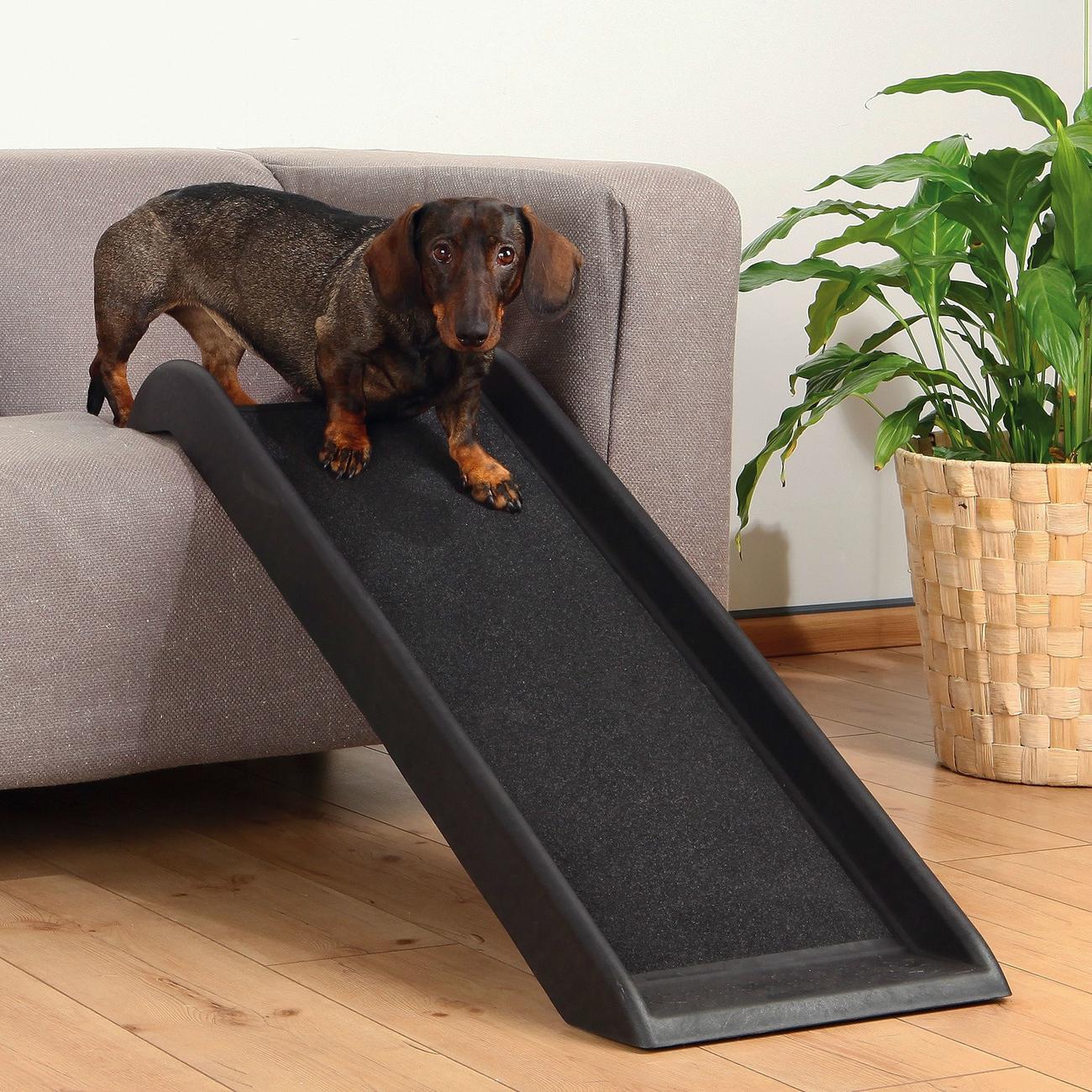 Trixie Hunderampe für kleine Hunde, 38 × 100 cm, schwarz