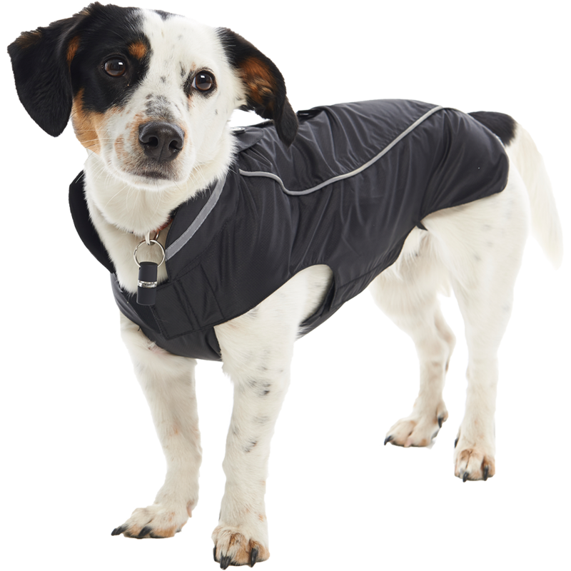 Buster Hunderegenmantel Buster, Bild 4