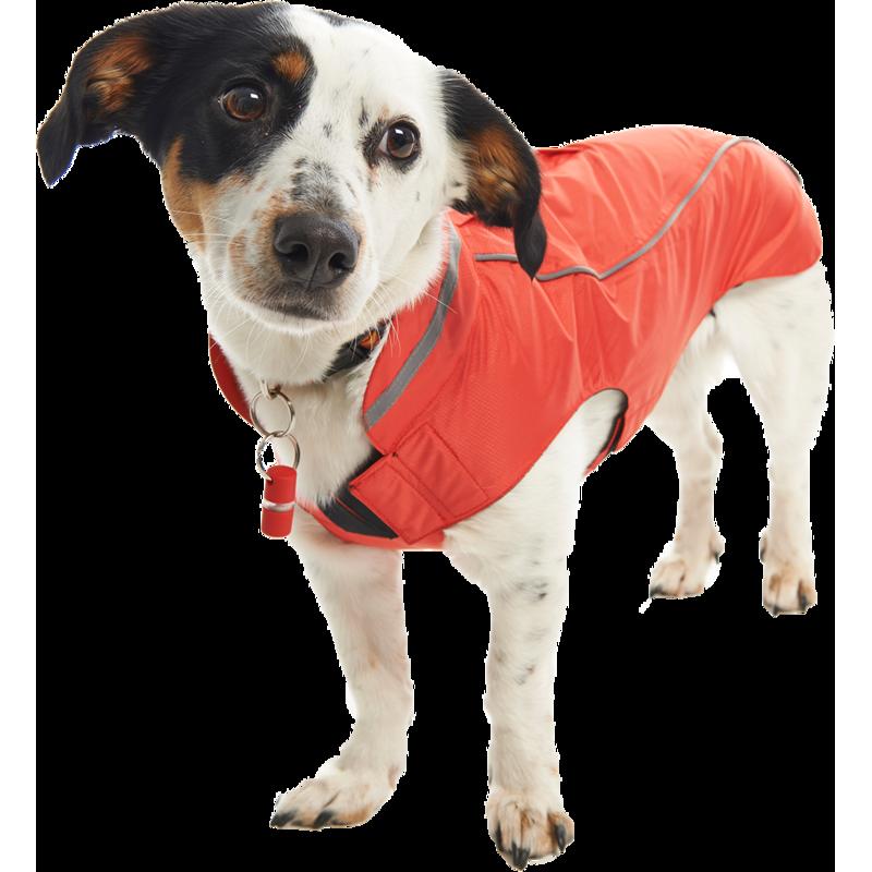 Buster Hunderegenmantel Buster, Bild 2