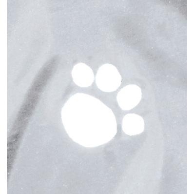 TRIXIE Hunderegenmantel, transparent 3000, Bild 3