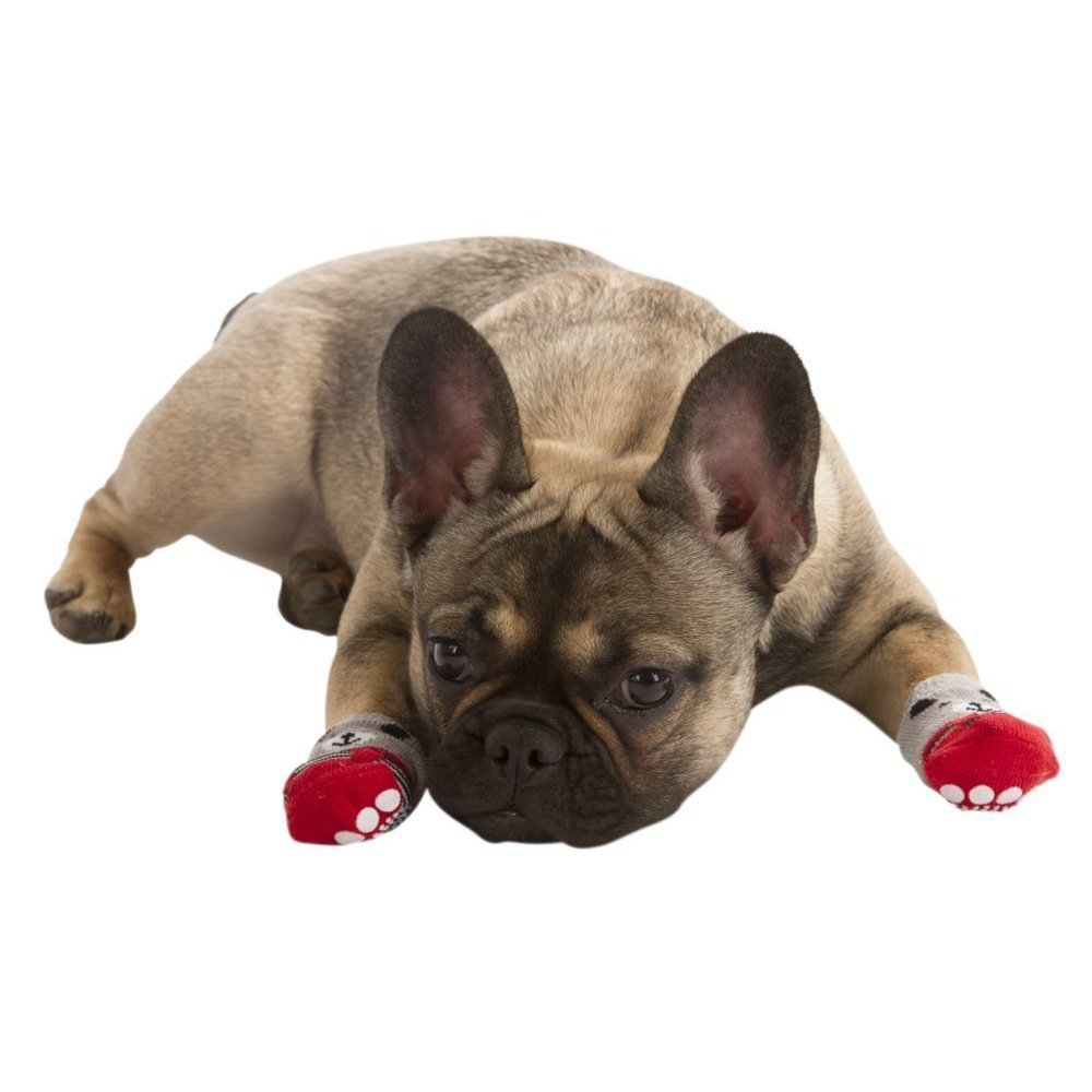 Kerbl Hundesocken Bruno, Bild 4