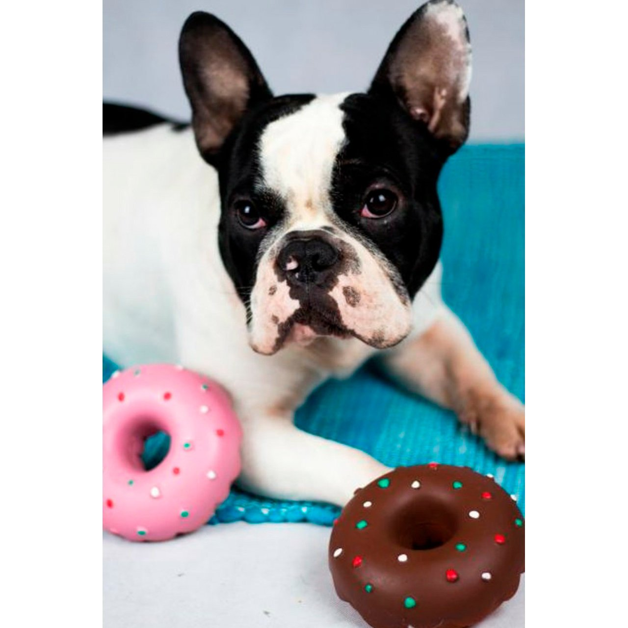 Karlie Hundespielzeug Doggy Donut aus Latex, Bild 2