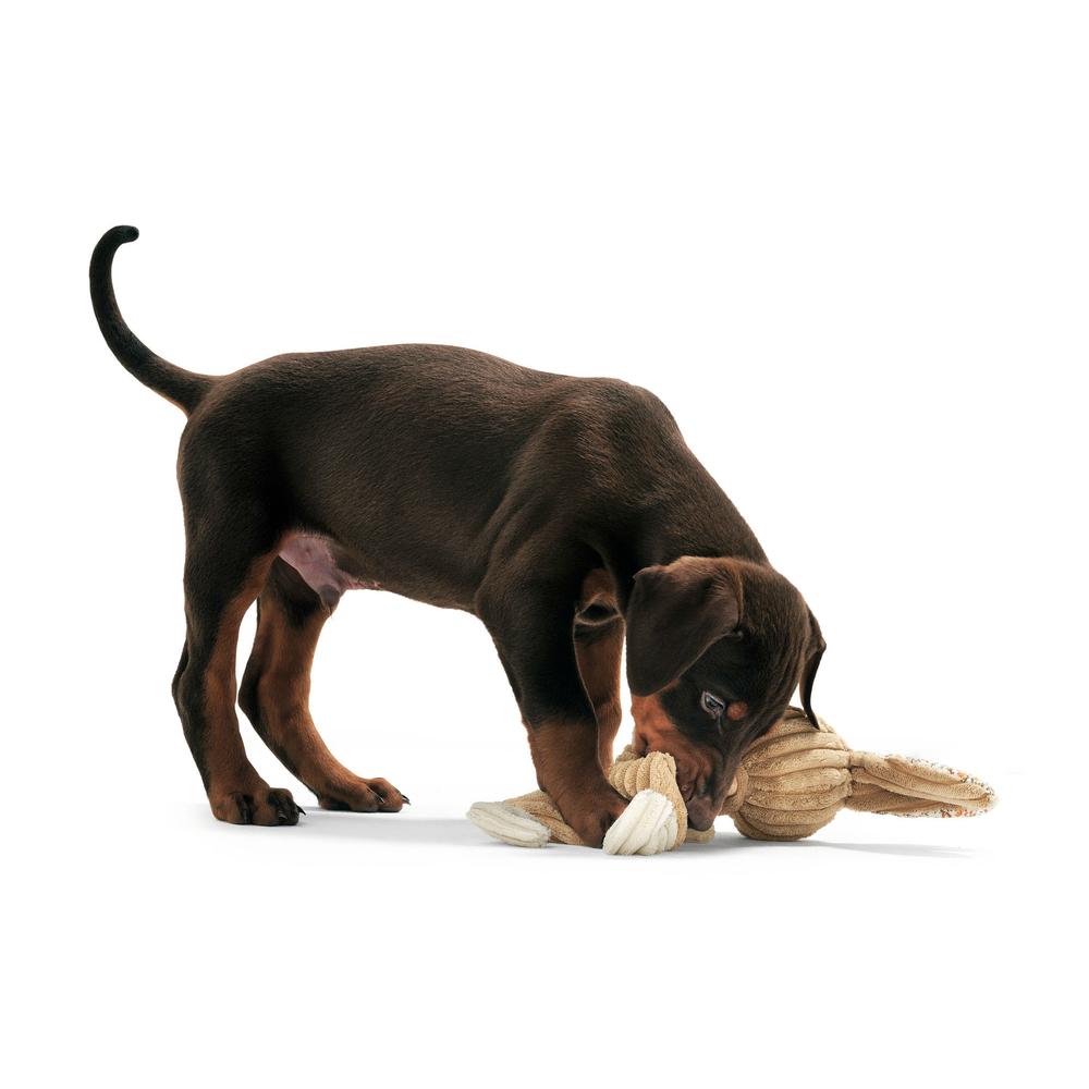 Hunter Hundespielzeug Huggly Amazonas , Bild 5