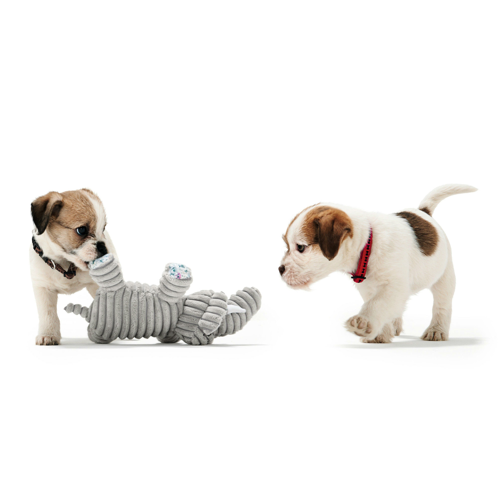 Hunter Hundespielzeug Huggly Amazonas , Bild 2
