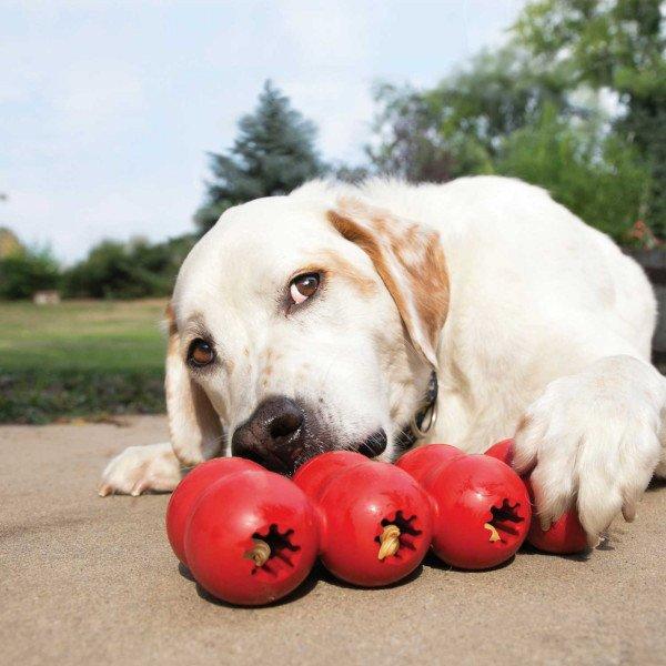 KONG Hundespielzeug Goodie Ribbon, Bild 2