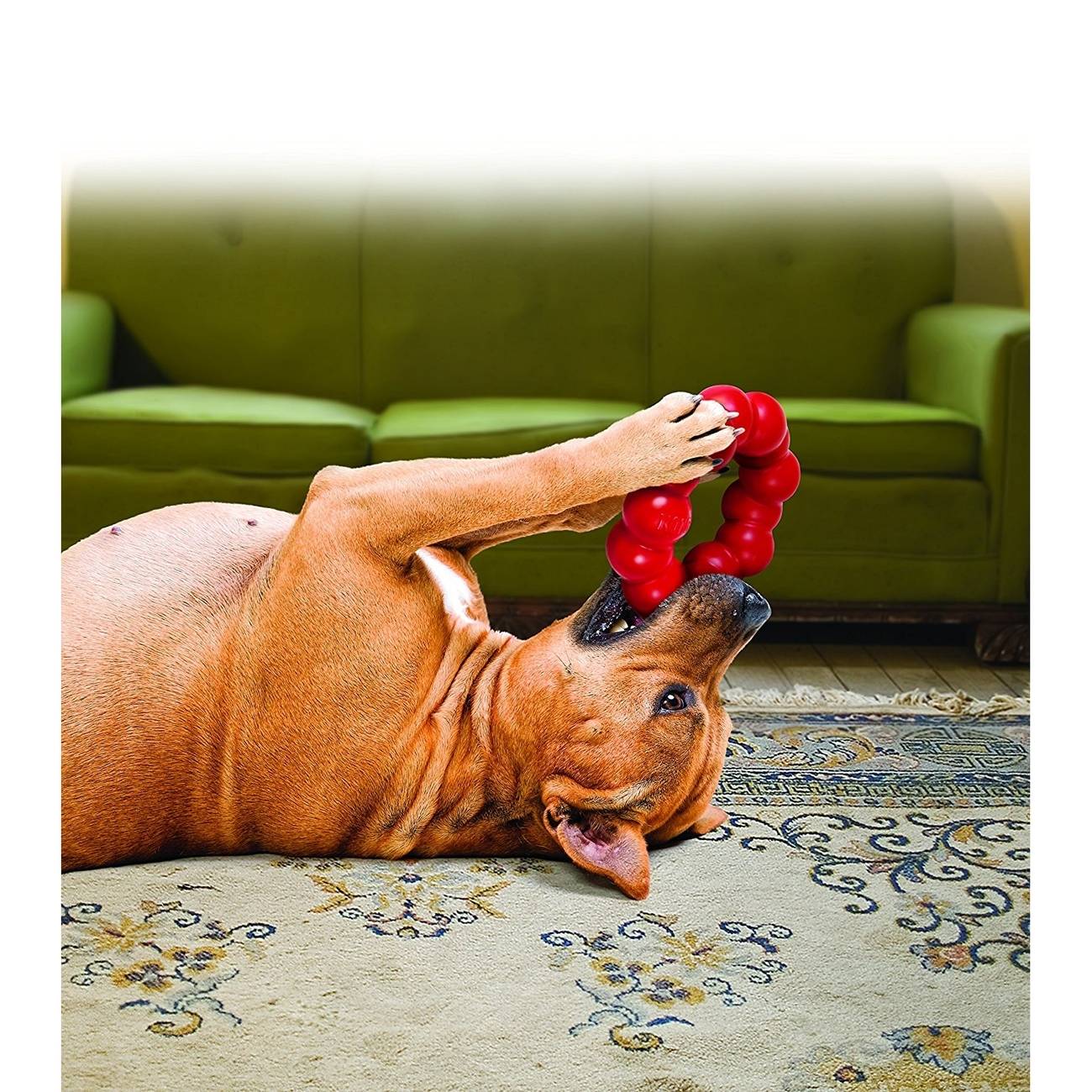 KONG Hundespielzeug Ring, Bild 4