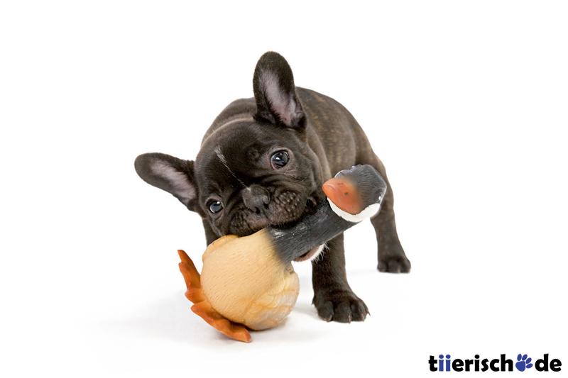 Hunter Hundespielzeug Real Duck mit Squeaker 46742, Bild 2