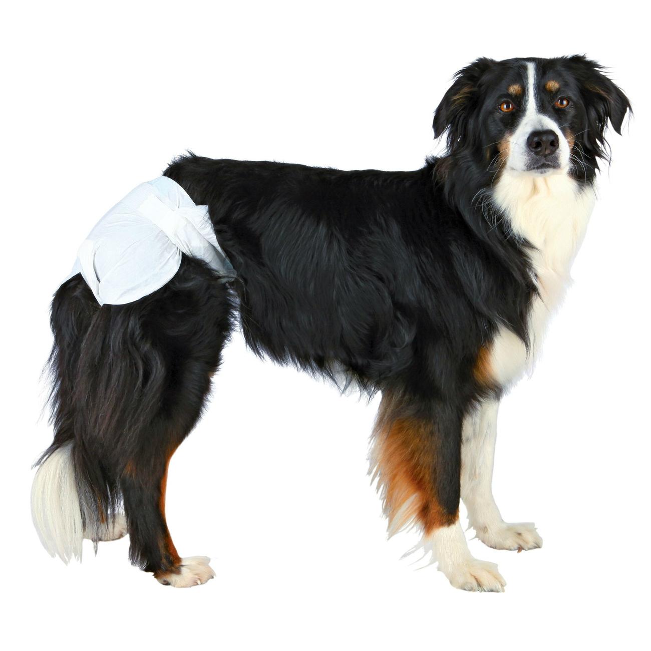 TRIXIE Hundewindeln für Hündinnen 23631, Bild 4