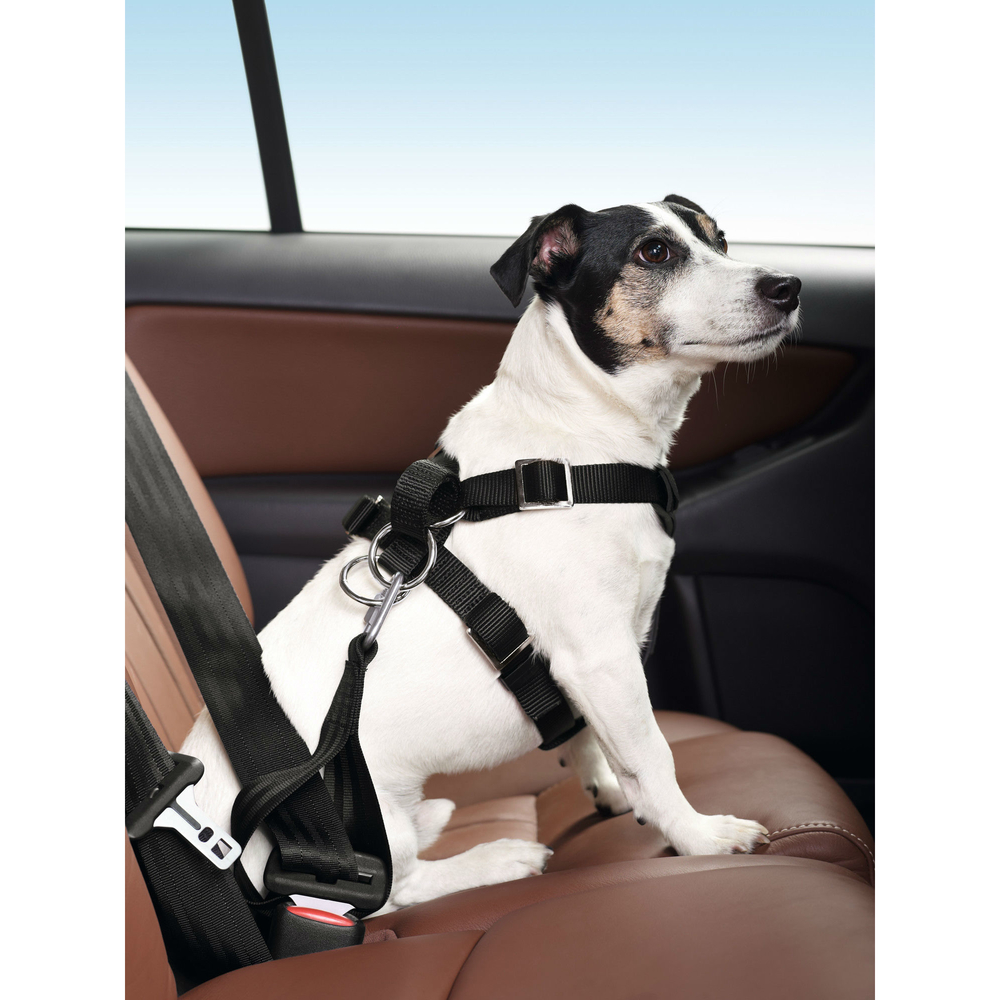 Hunter Autosicherheitsgeschirr Bodyguard Classic 30203, Bild 4