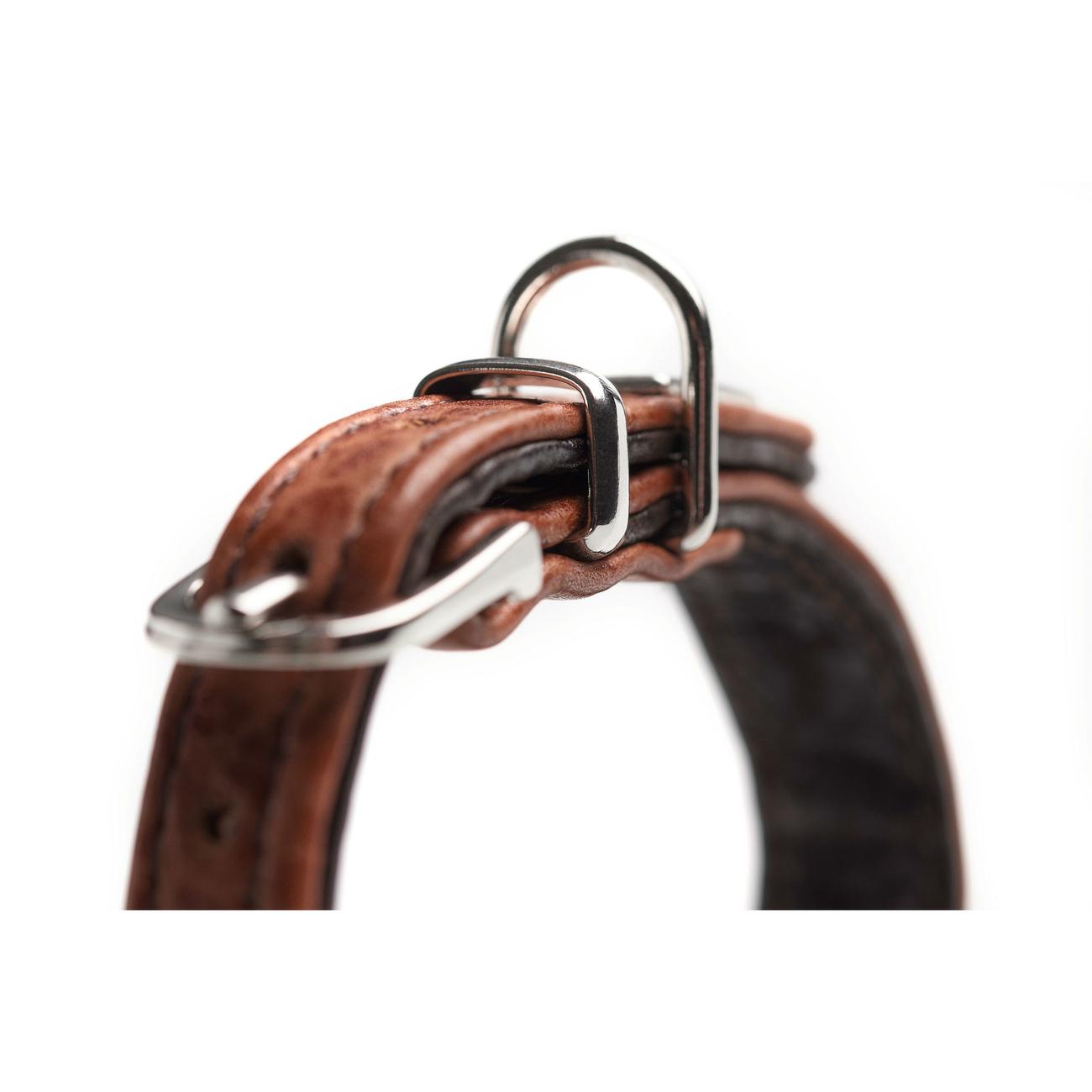 Hunter Halsband Cody Petit für Kleinhunde 65264, Bild 6