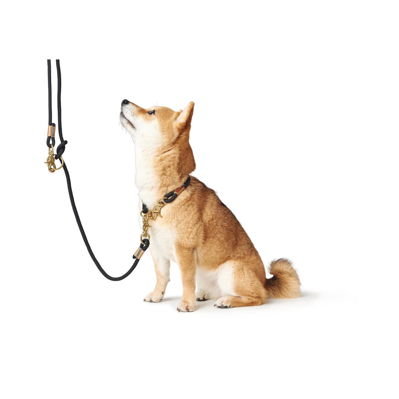 Hunter Halsung Halsband Oss für Hunde 66989, Bild 20
