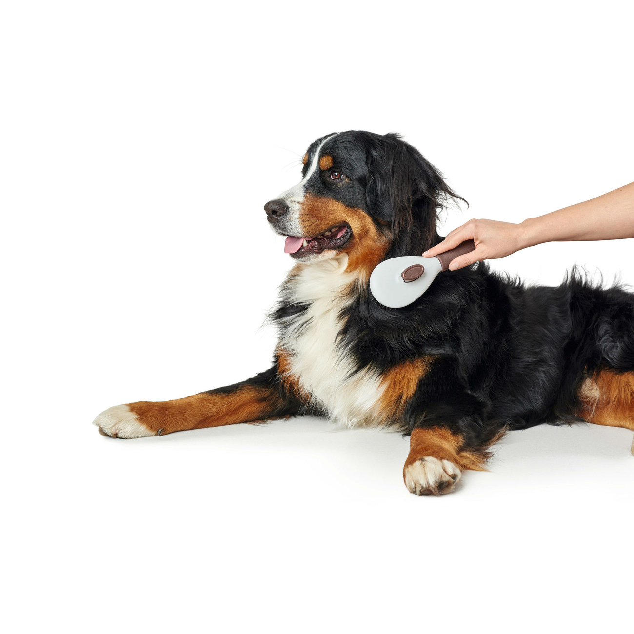 Hunter Haustier Pflegebürste Spa selbstreinigend 65557, Bild 4
