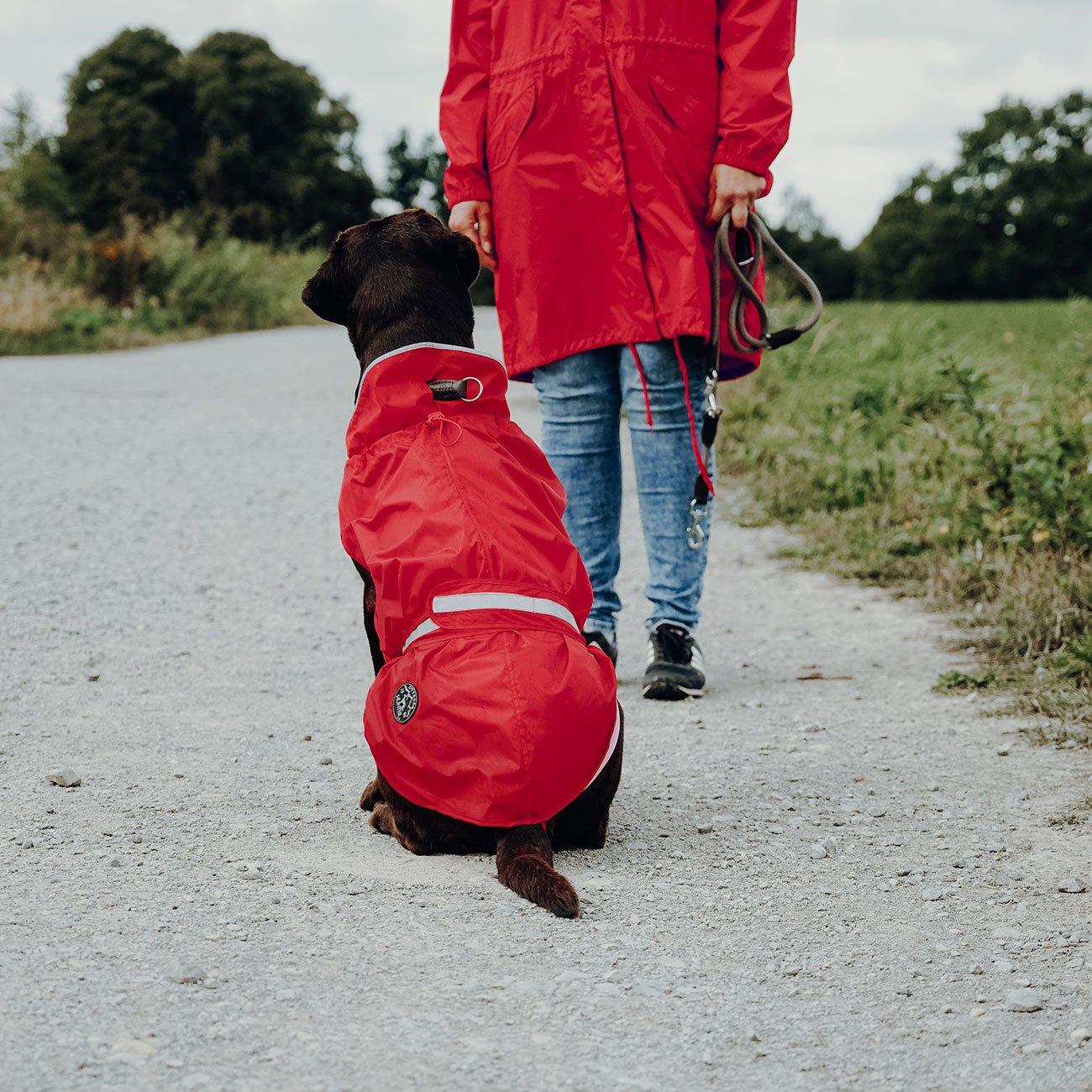 Hunter Hunde Regenmantel Uppsala Rain 66246, Bild 5