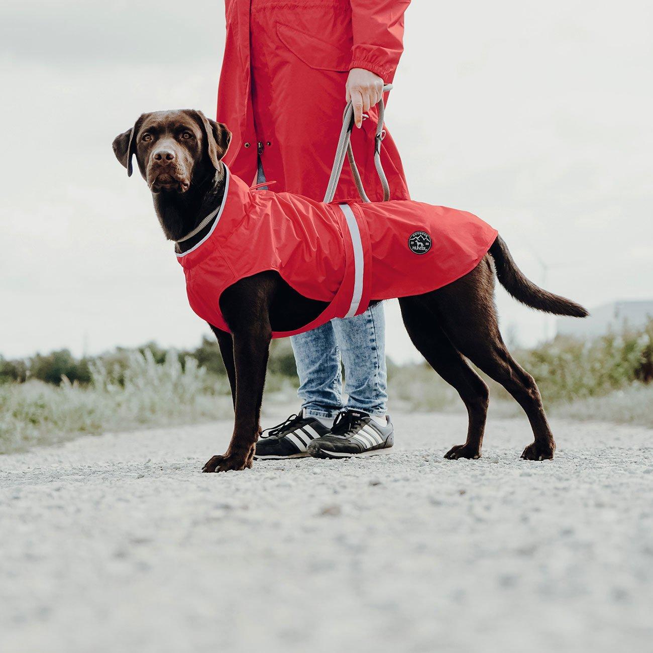 Hunter Hunde Regenmantel Uppsala Rain 66246, Bild 4