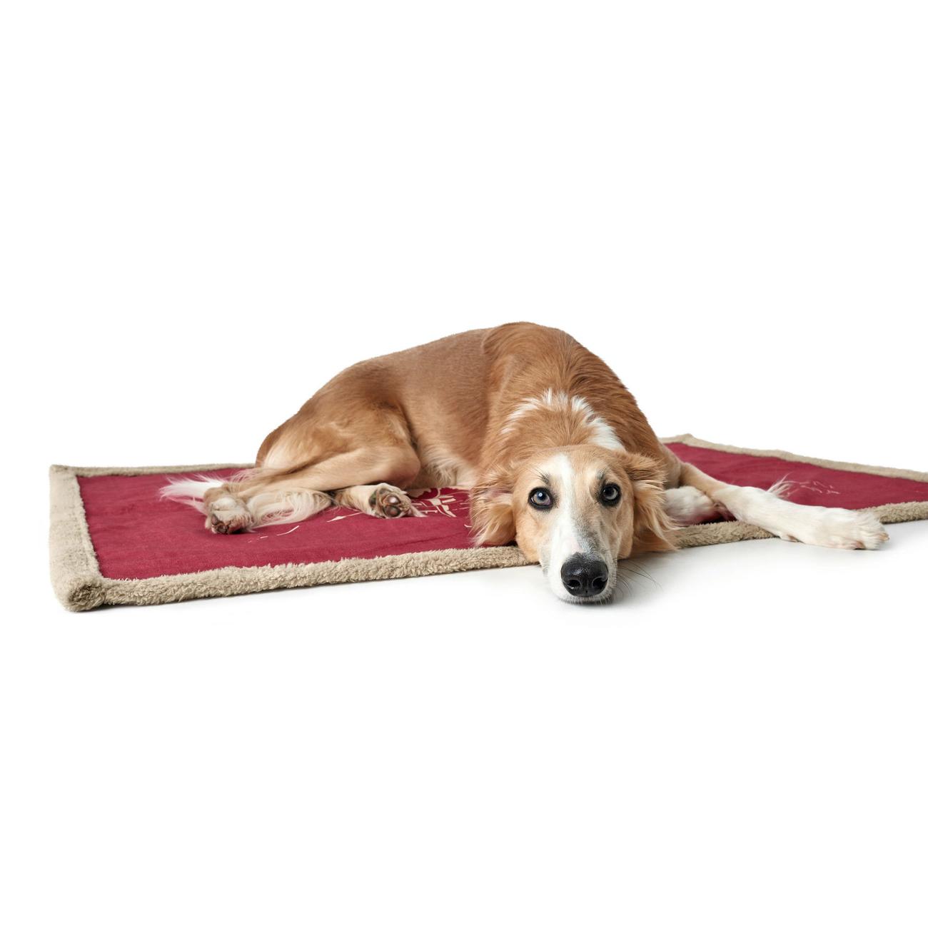 Hunter Hundedecke List , Bild 3