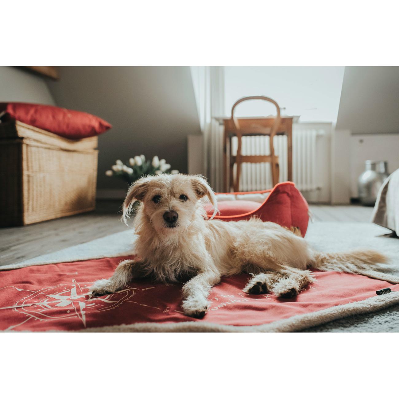 Hunter Hundedecke List , Bild 6