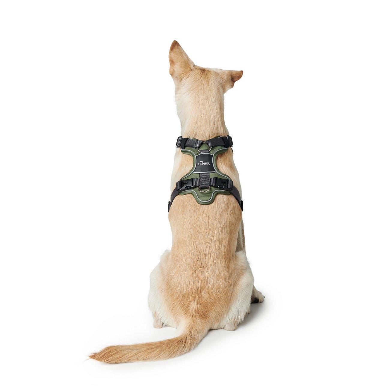 Hunter Hundegeschirr Divo 67609, Bild 17