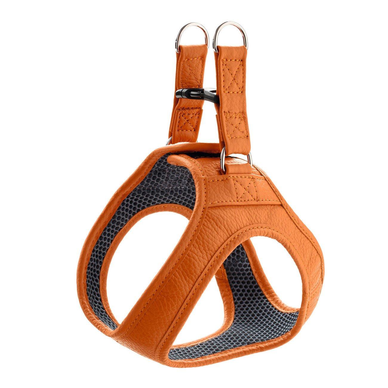 Hunter Hundegeschirr Hilo, Gr. XXS - XS: 30 - 34 cm Verstellmöglichkeit Hals, 32 - 36 cm Verstellmöglichkeit Bauch, orange
