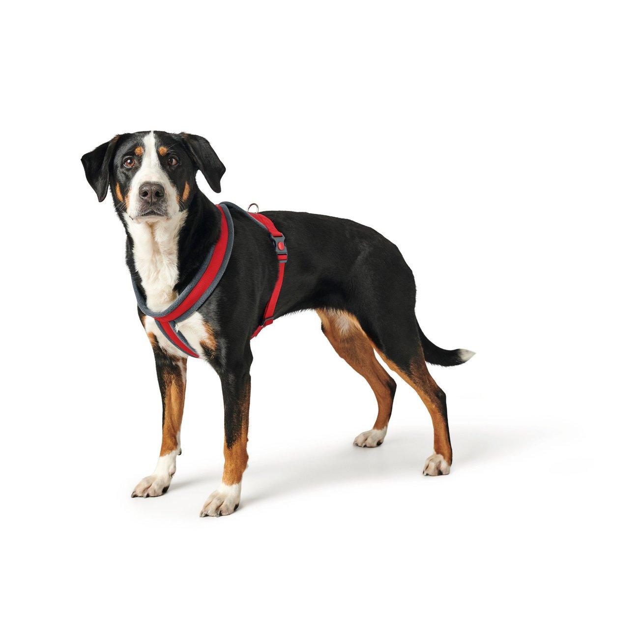 Hunter Hundegeschirr London Comfort 68084, Bild 2