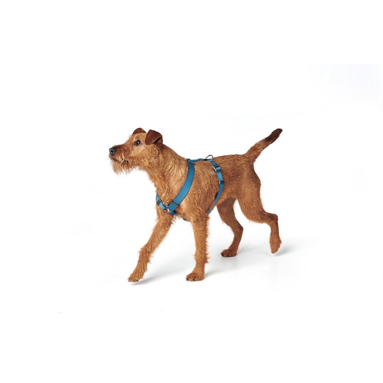 Hunter Hundegeschirr London Vario Rapid 68071, Bild 28
