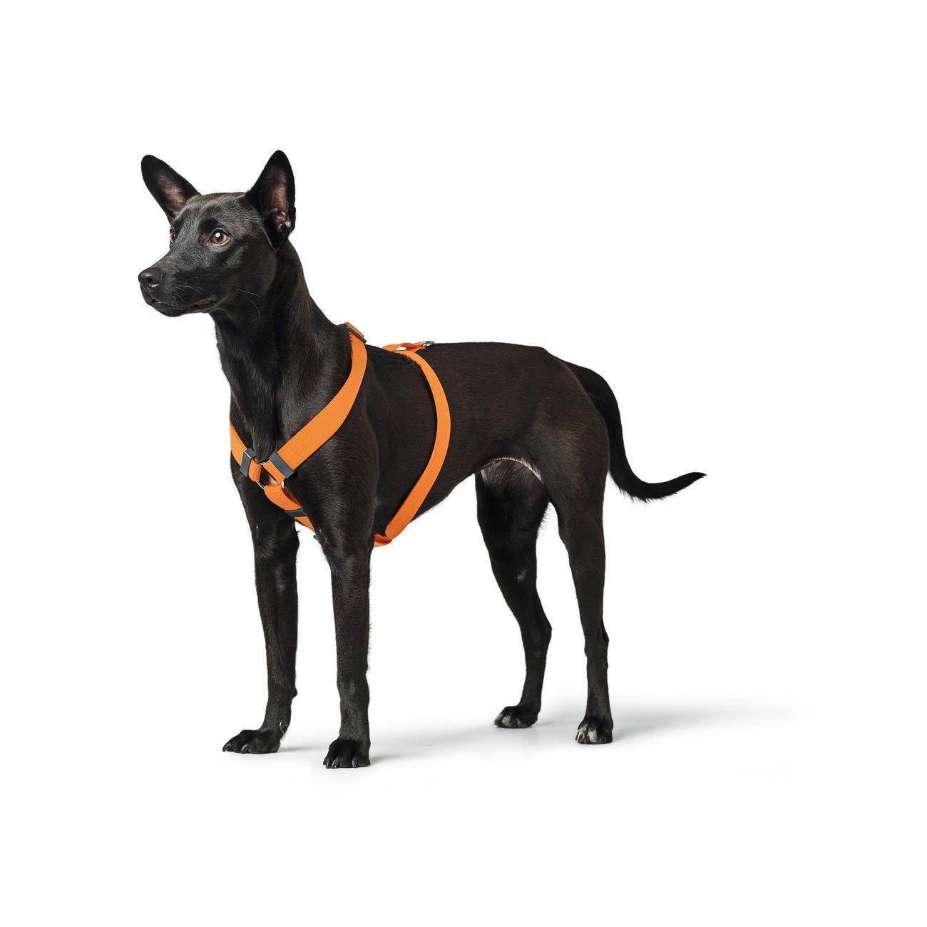 Hunter Hundegeschirr London Vario Rapid Preview Image