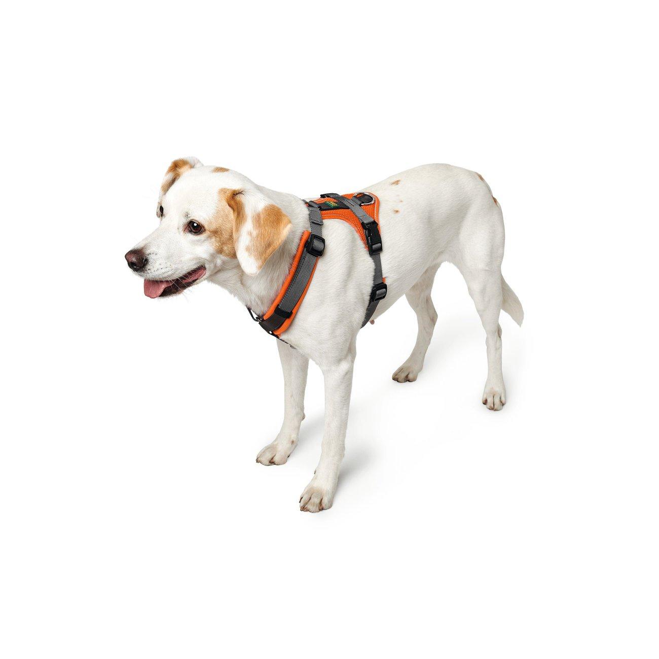 Hunter Hundegeschirr Maldon gepolstert 67509, Bild 4