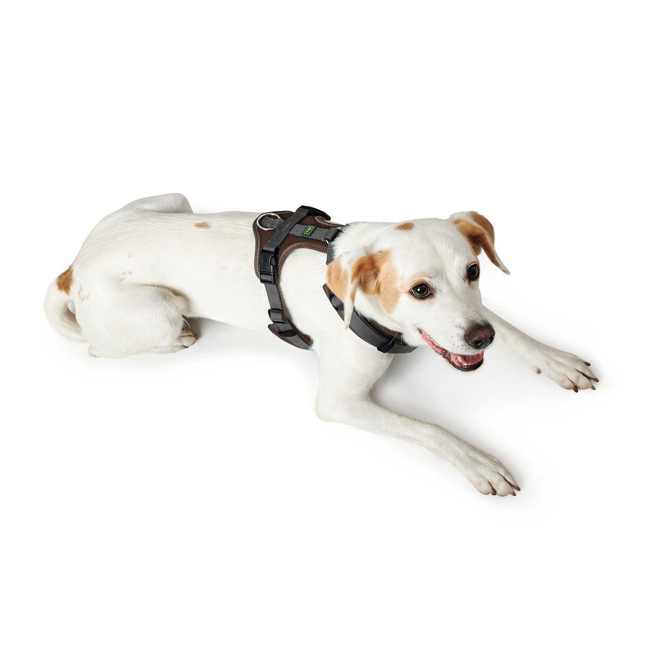 Hunter Hundegeschirr Maldon gepolstert 67509, Bild 12