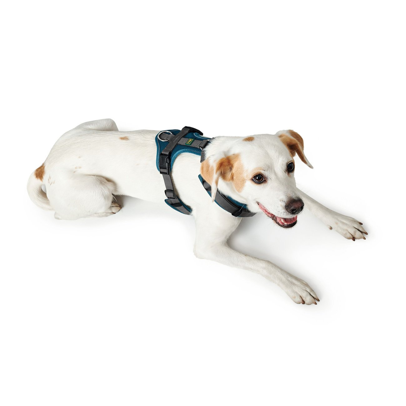 Hunter Hundegeschirr Maldon gepolstert 67509, Bild 14
