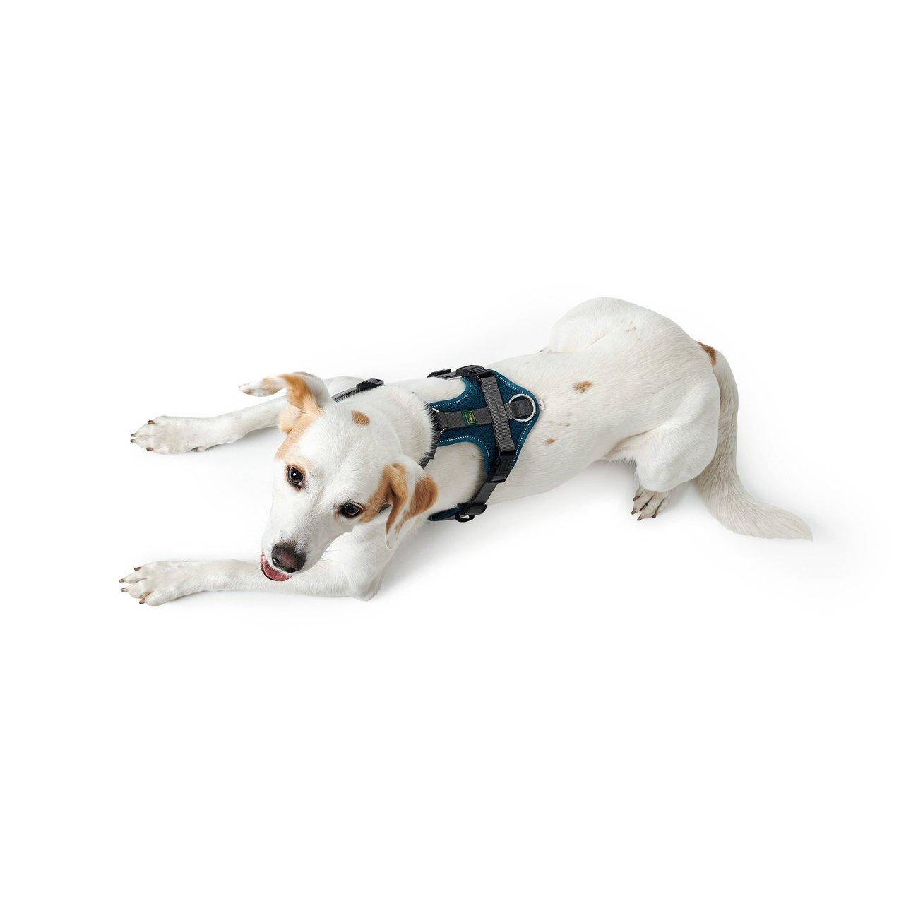 Hunter Hundegeschirr Maldon gepolstert 67509, Bild 16