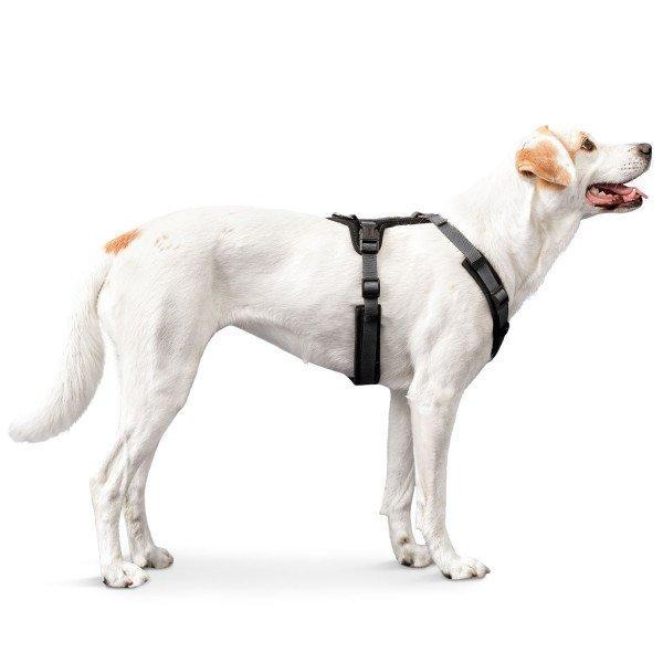 Hunter Hundegeschirr Maldon gepolstert 67509, Bild 17