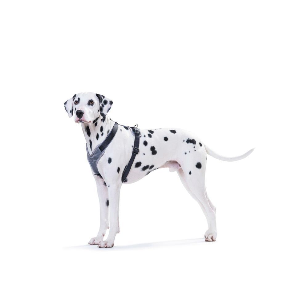 Hunter Hundegeschirr Neopren 62247, Bild 11