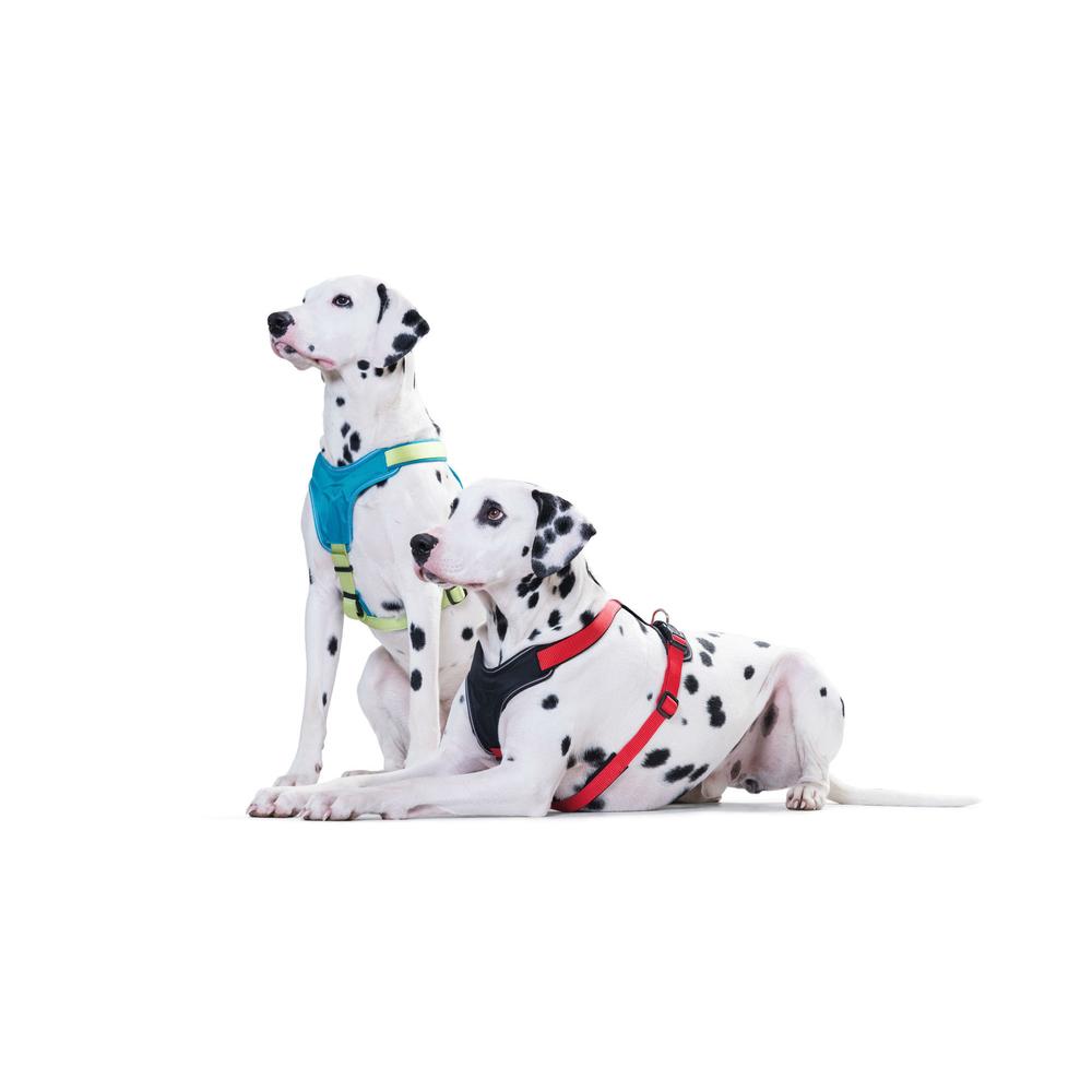 Hunter Hundegeschirr Neopren 62247, Bild 13