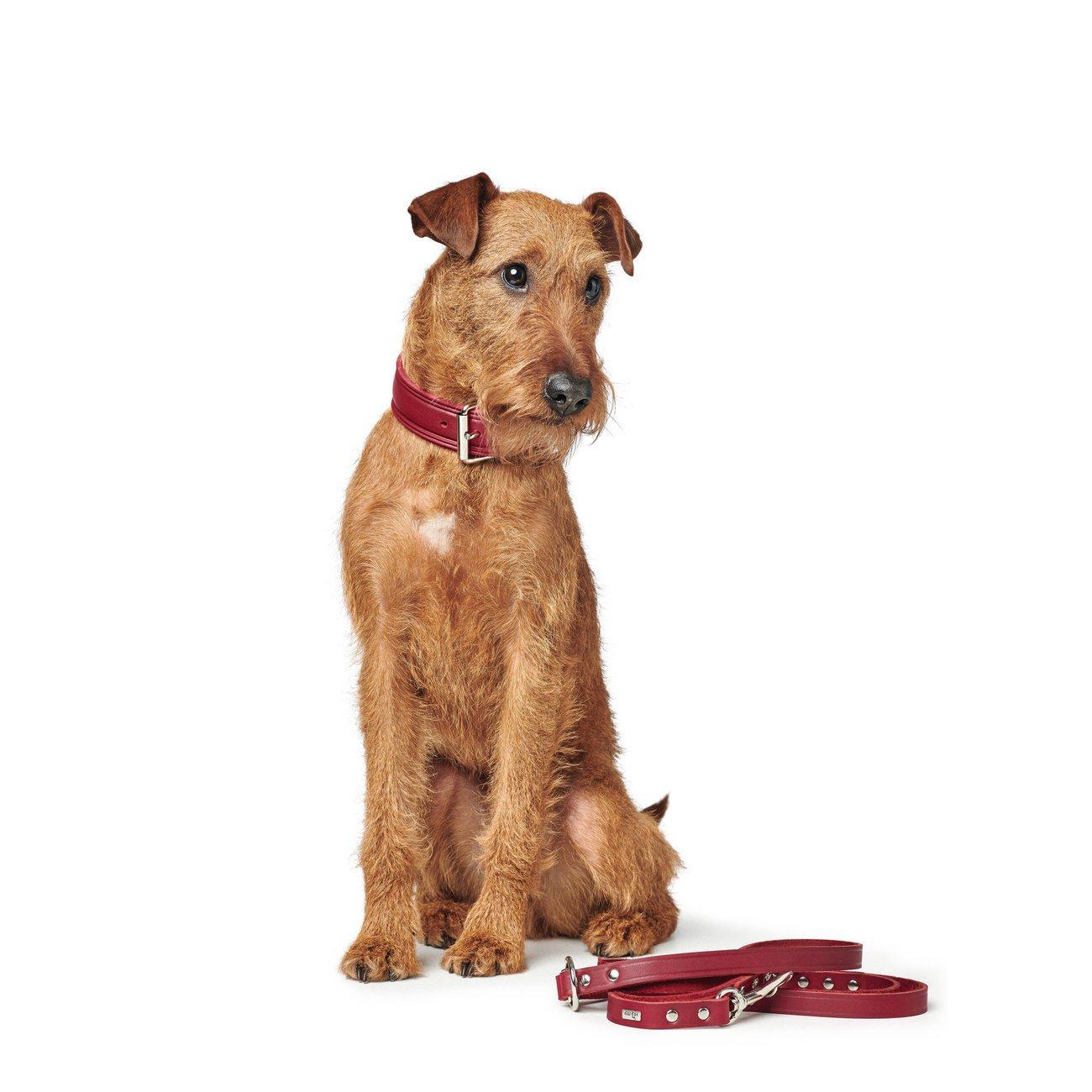Hunter Hundehalsband Aalborg Rustica 68503, Bild 34