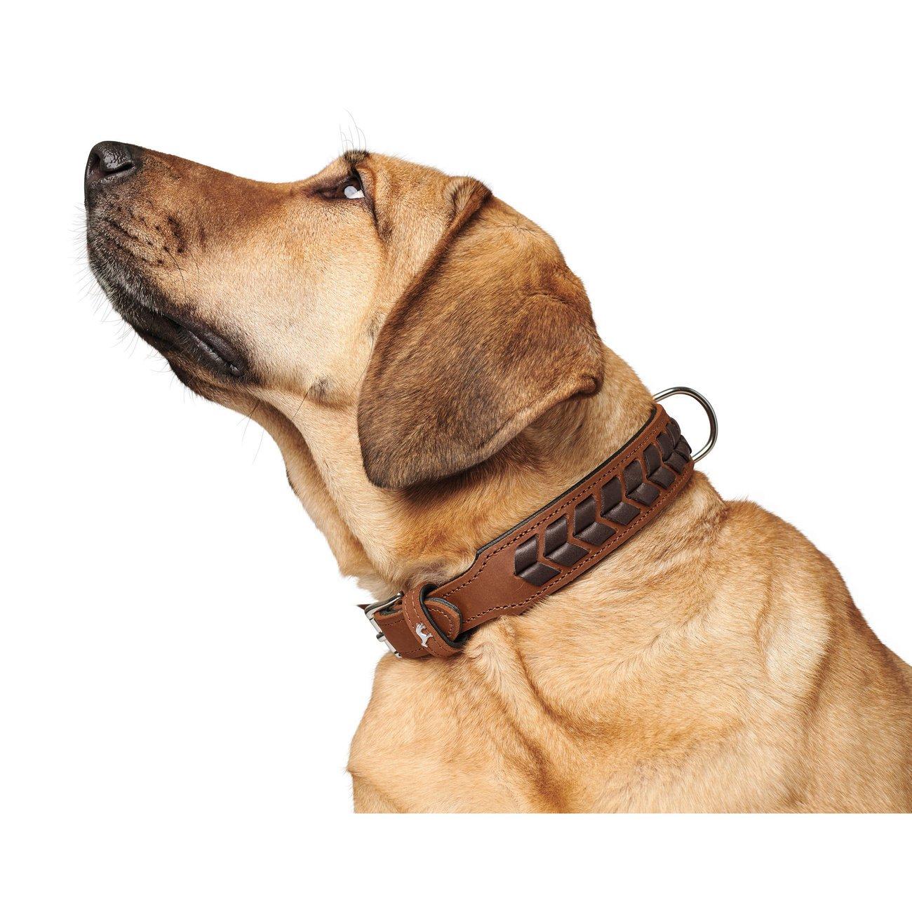 Hunter Hundehalsband El Paso 68555, Bild 2