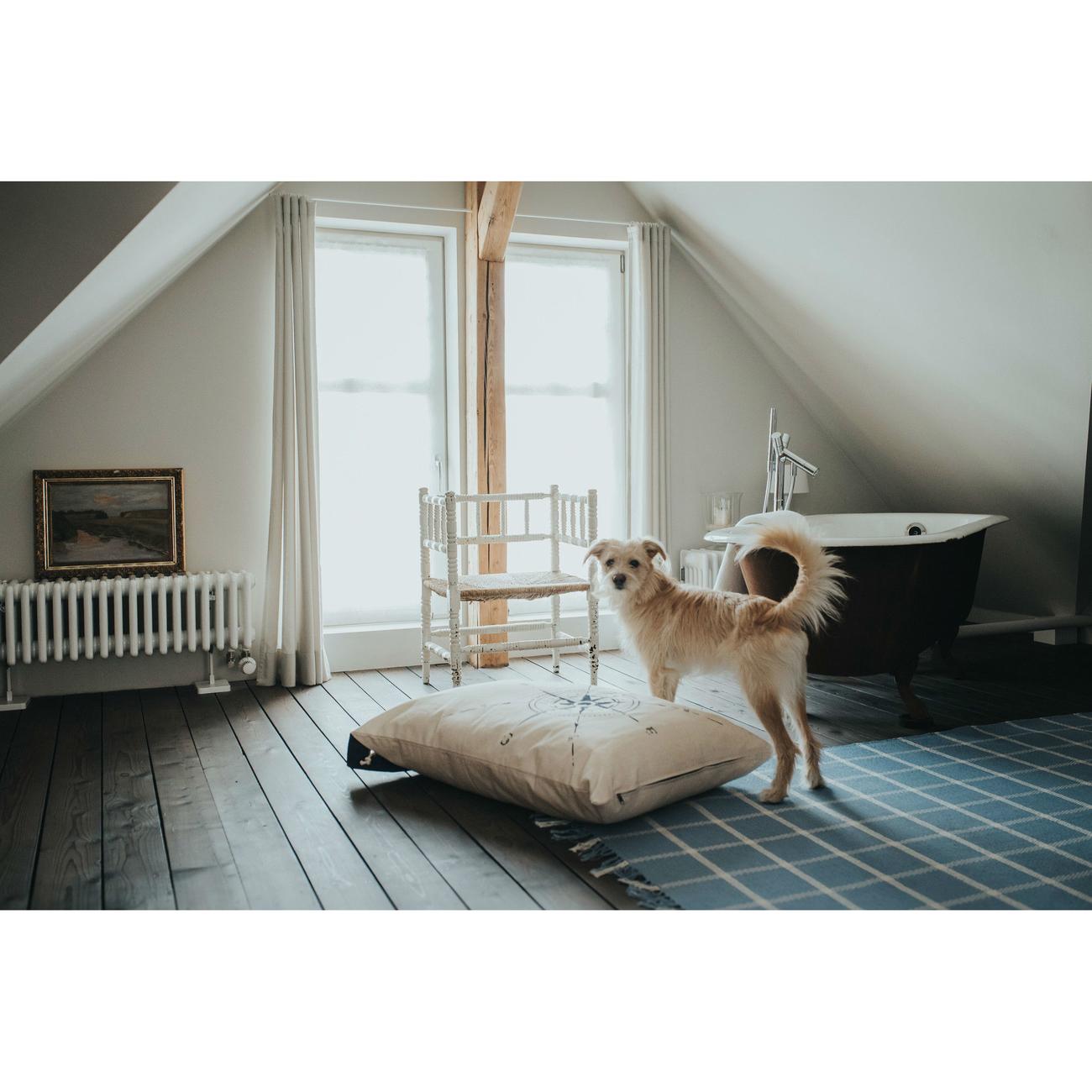 Hunter Hundekissen List 63953, Bild 6