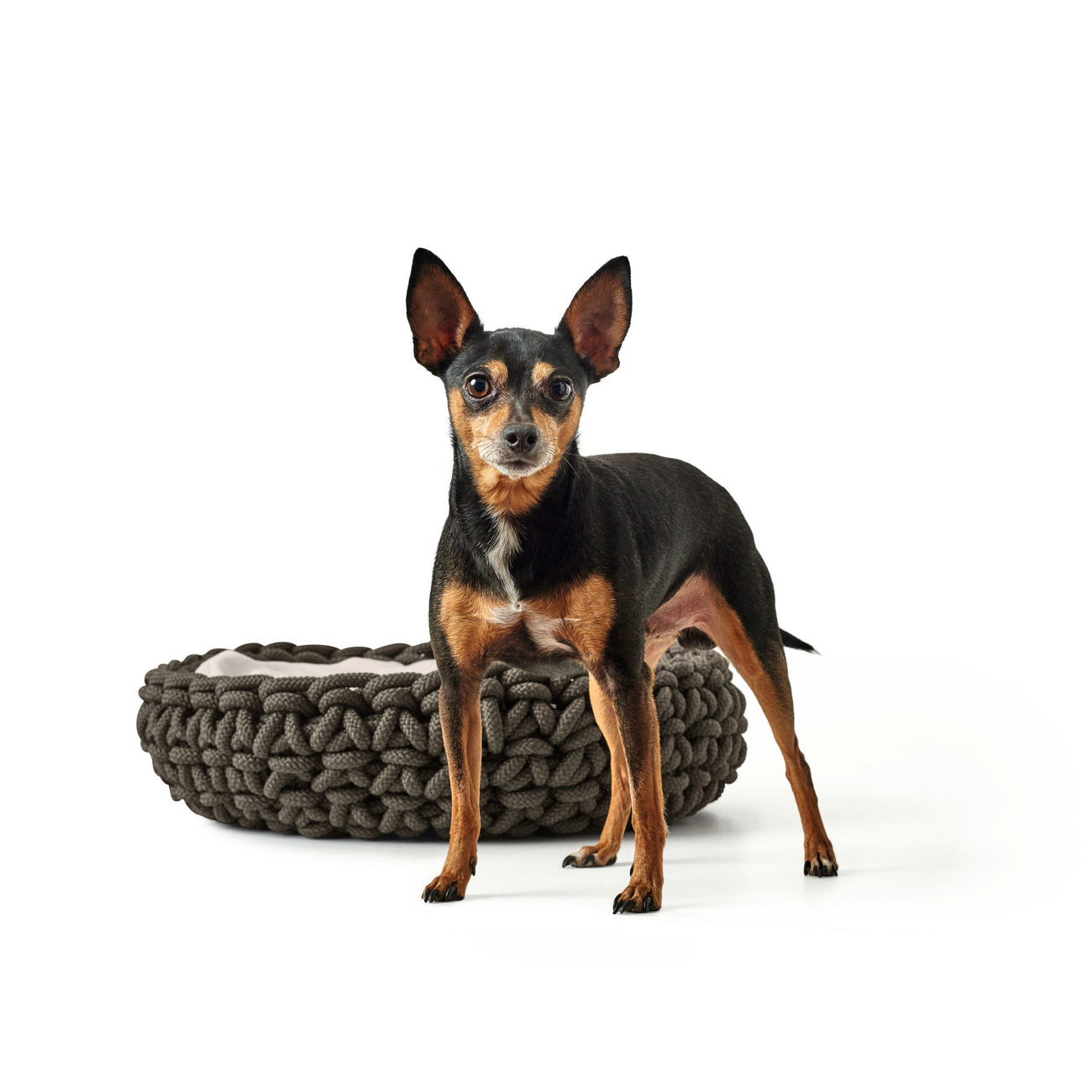 Hunter Hundekorb geflochten Linz , Bild 11