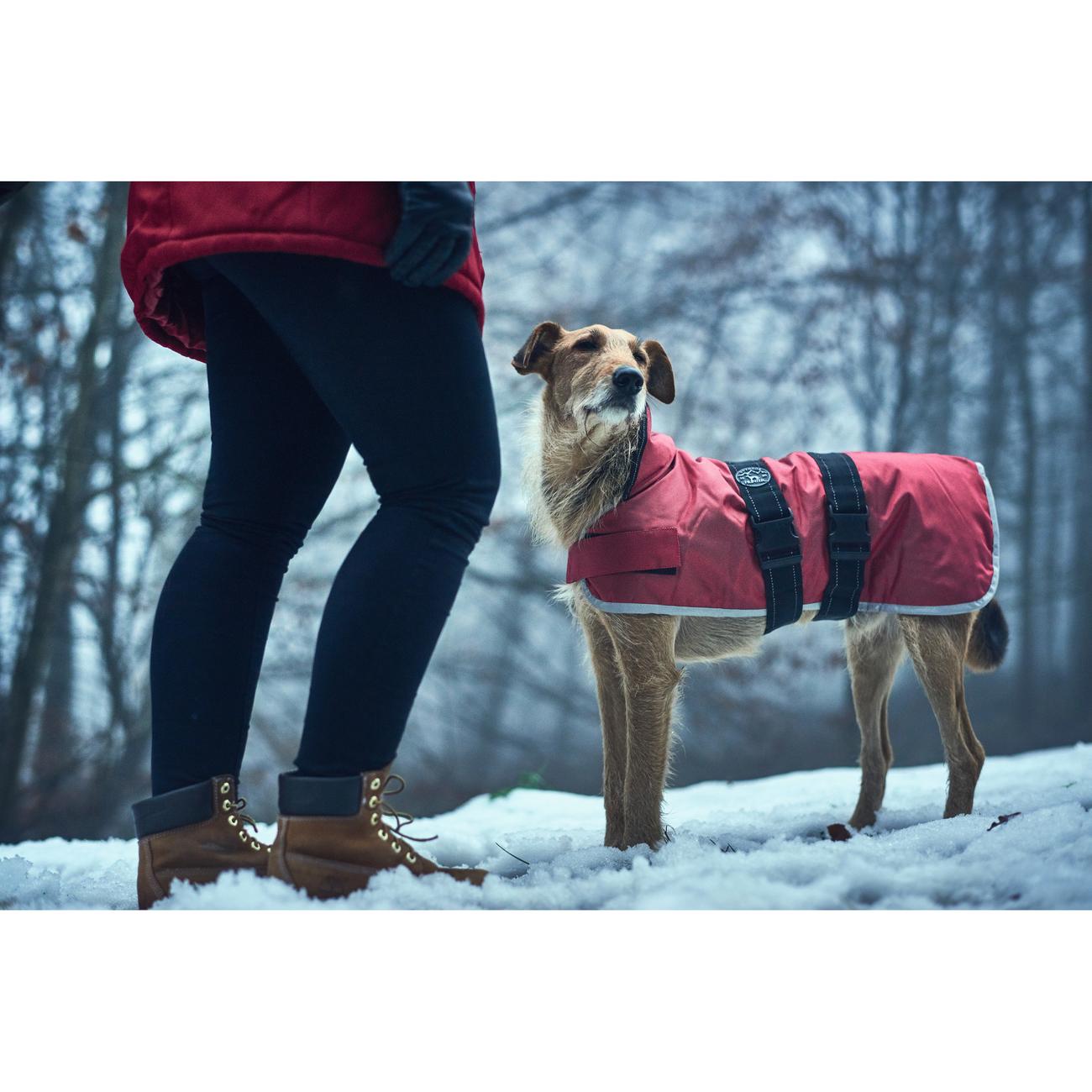 Hunter Hundemantel Denali Reflect 62939, Bild 6