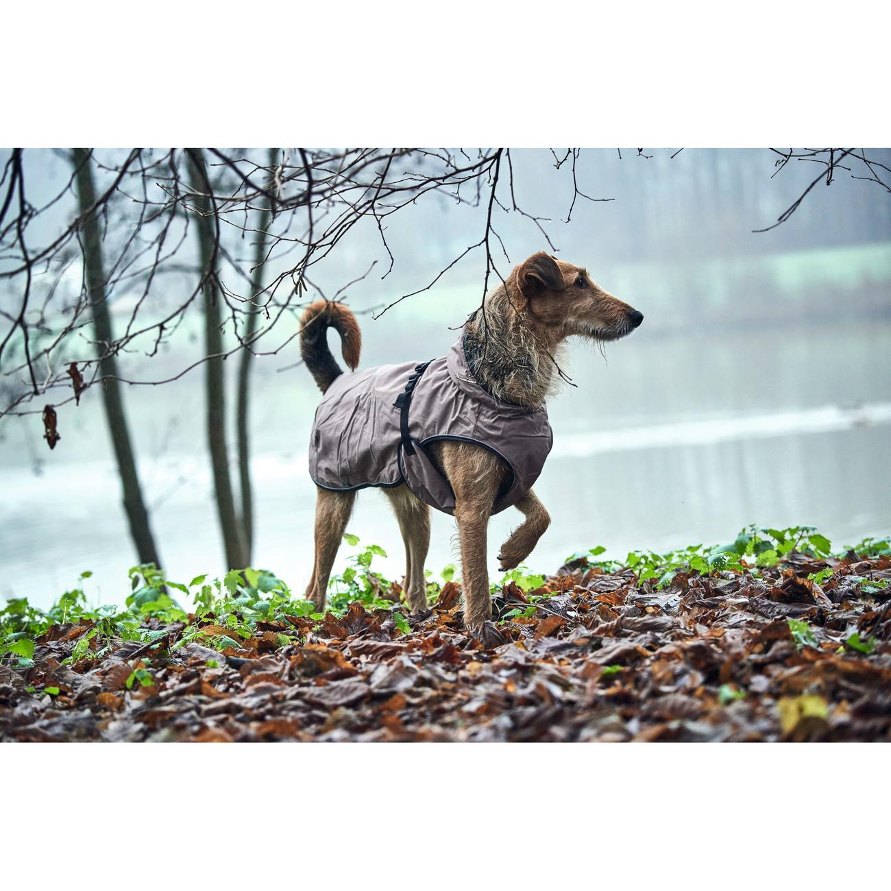 Hunter Hundemantel Uppsala 62968, Bild 6