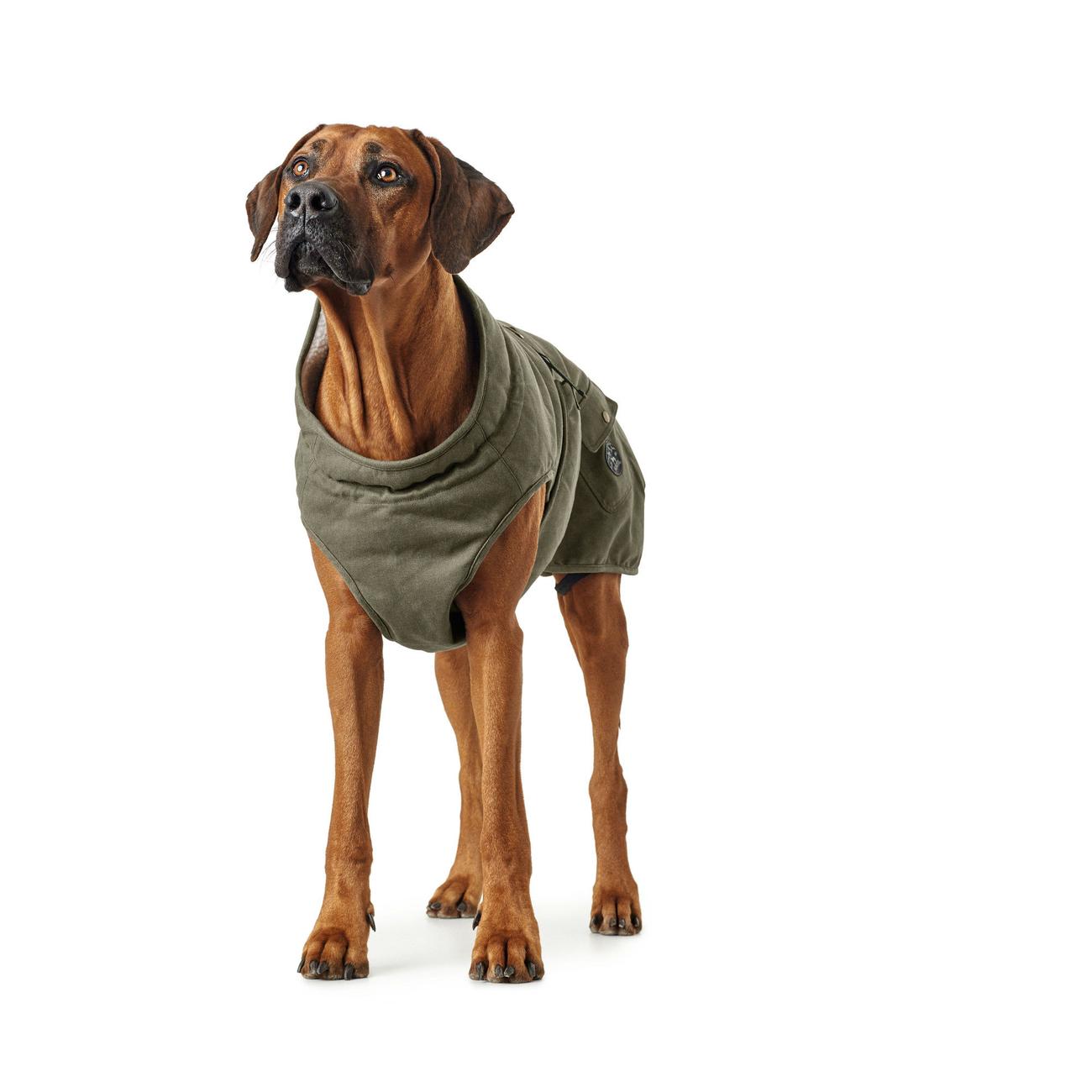 Hunter Hundemantel Uppsala Trend 66222, Bild 4