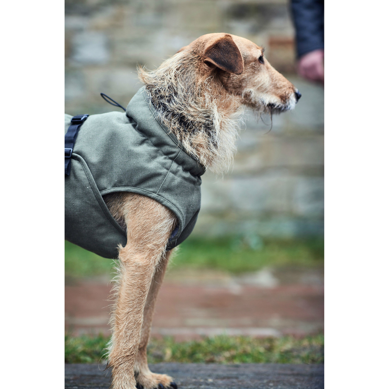 Hunter Hundemantel Uppsala Trend 66222, Bild 5
