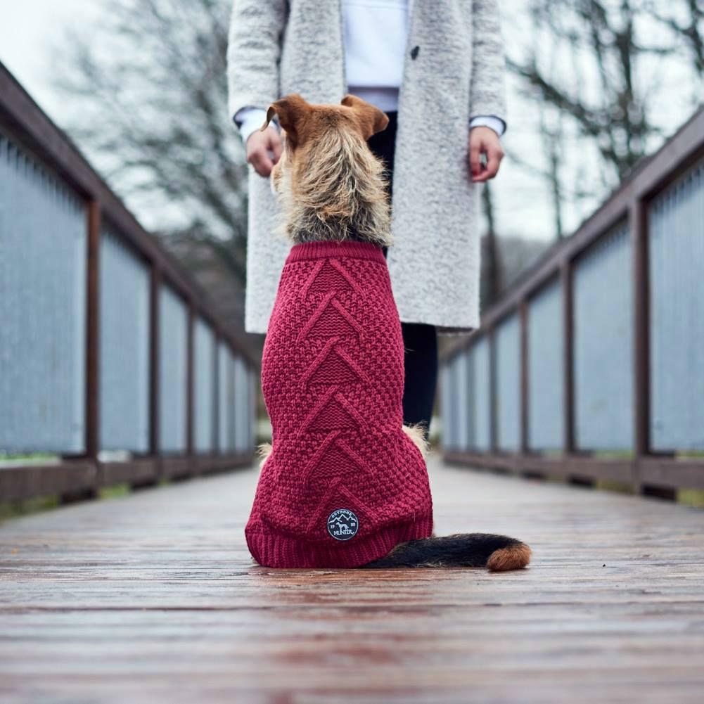Hunter Hundepullover Malmö Bild 2
