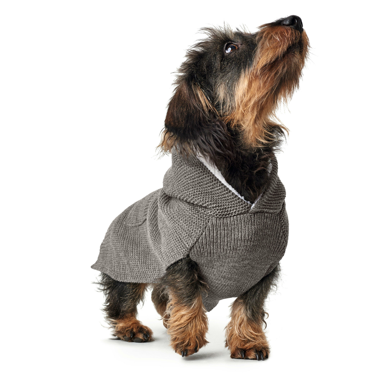 Hunter Hundepullover Rögla 66370, Bild 5