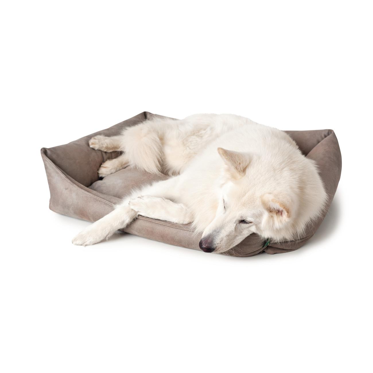 Hunter Hundesofa Bologna Kunstleder 67180, Bild 8