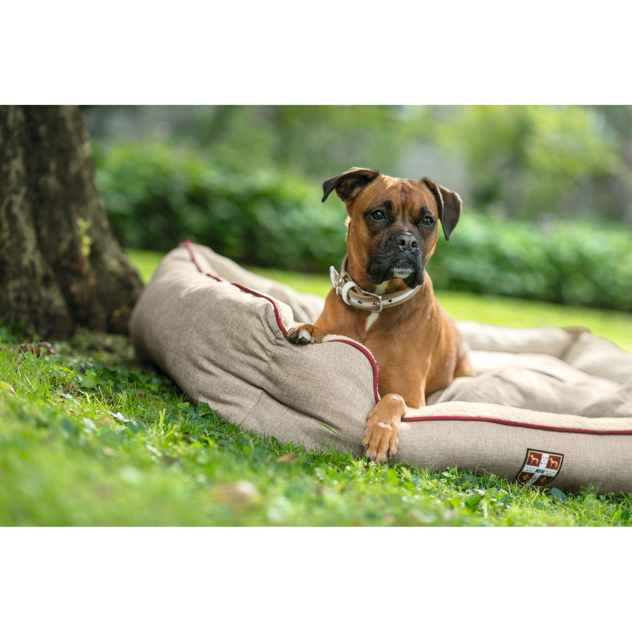 Hunter Hundesofa University 61381, Bild 11