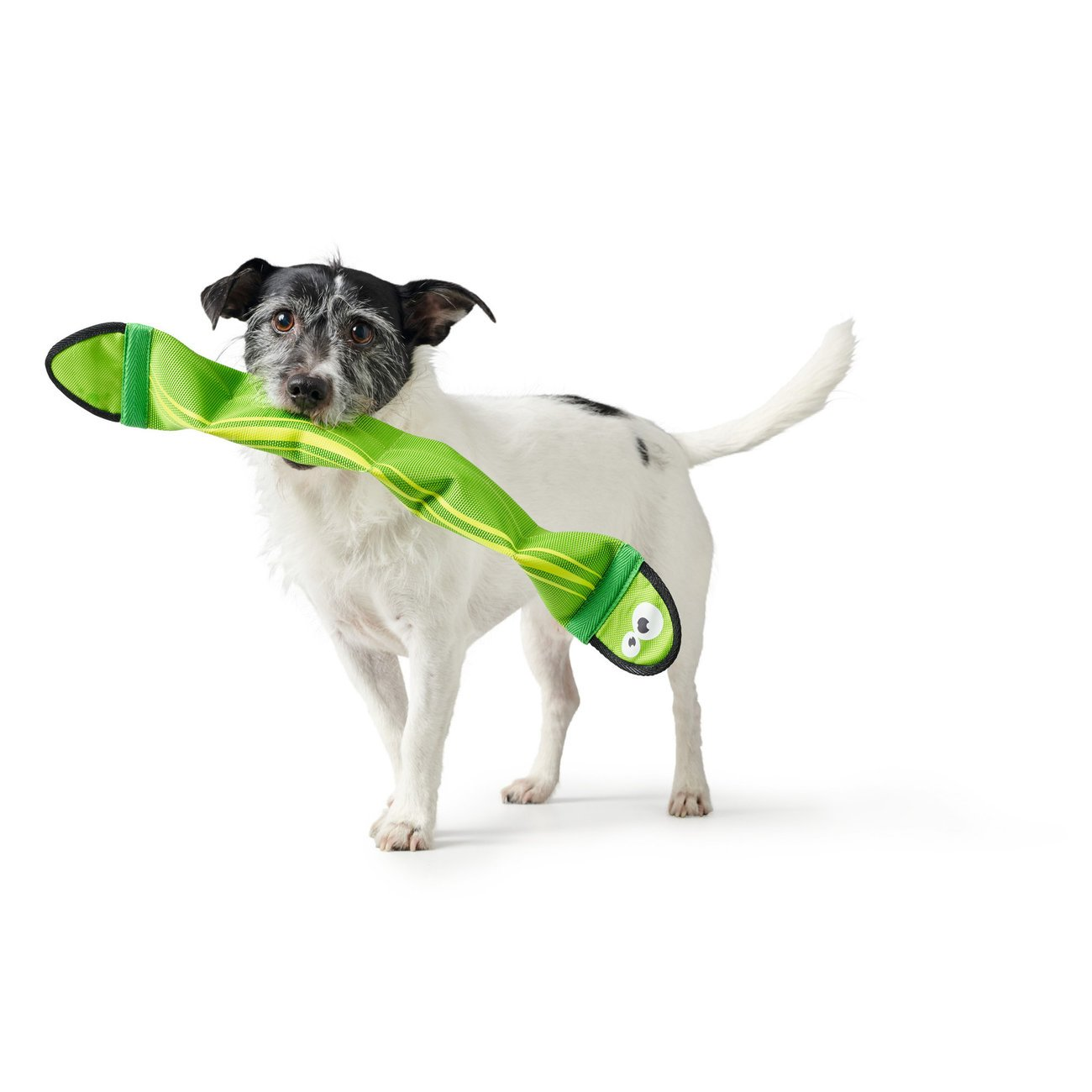 Hunter Hundespielzeug Aqua Mindelo , Bild 2